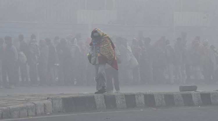 Hisar records 0.3 degree C as cold wave grips Haryana