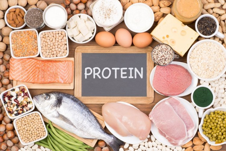 Harmful effect of consuming too much protein