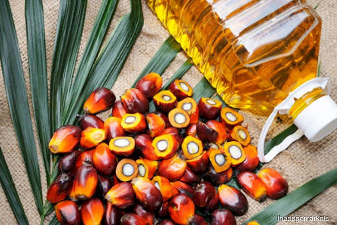 Malaysia to buy more sugar from India to resolve Palm Oil tensions : Sources