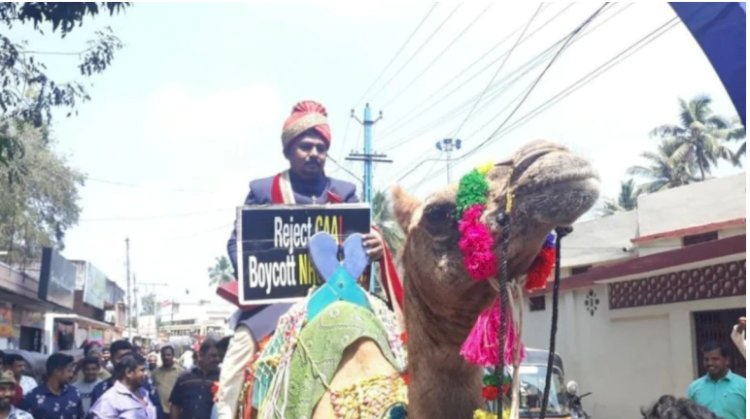 Kerala groom takes his baarat  on camel with a placard to protest against CAA